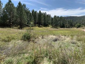 Photo of Lot 54 Greg Drive, Hot Springs, SD 57747 (MLS # 62690)