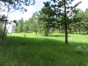 Photo of 116 Trails End, Custer, SD 57730 (MLS # 60759)