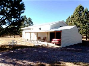 Photo of 25619 Blacktail Court, Custer, SD 57735 (MLS # 59869)