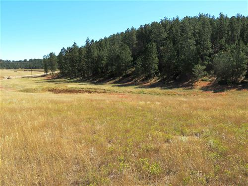 Photo of TBD Gold Rush, Custer, SD 57730 (MLS # 69887)