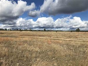 Photo of Lot 7 Custer Highlands, Custer, SD 57730 (MLS # 59907)