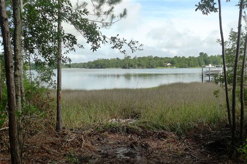 Photo of 761 Chadwick Shores Drive, Sneads Ferry, NC 28460 (MLS # 100115000)