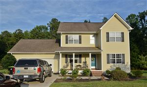Photo of 105 Rocky Court, Richlands, NC 28574 (MLS # 100176004)
