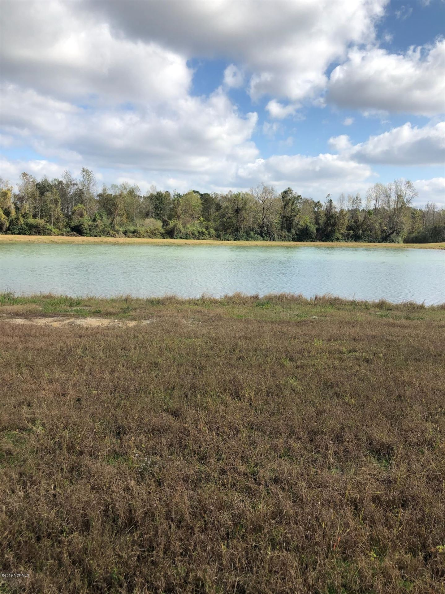 Photo of 1133-77 White Oak River Road, Maysville, NC 28555 (MLS # 100142004)