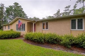 Photo of 115 Beagle Trail, Wilmington, NC 28409 (MLS # 100175006)