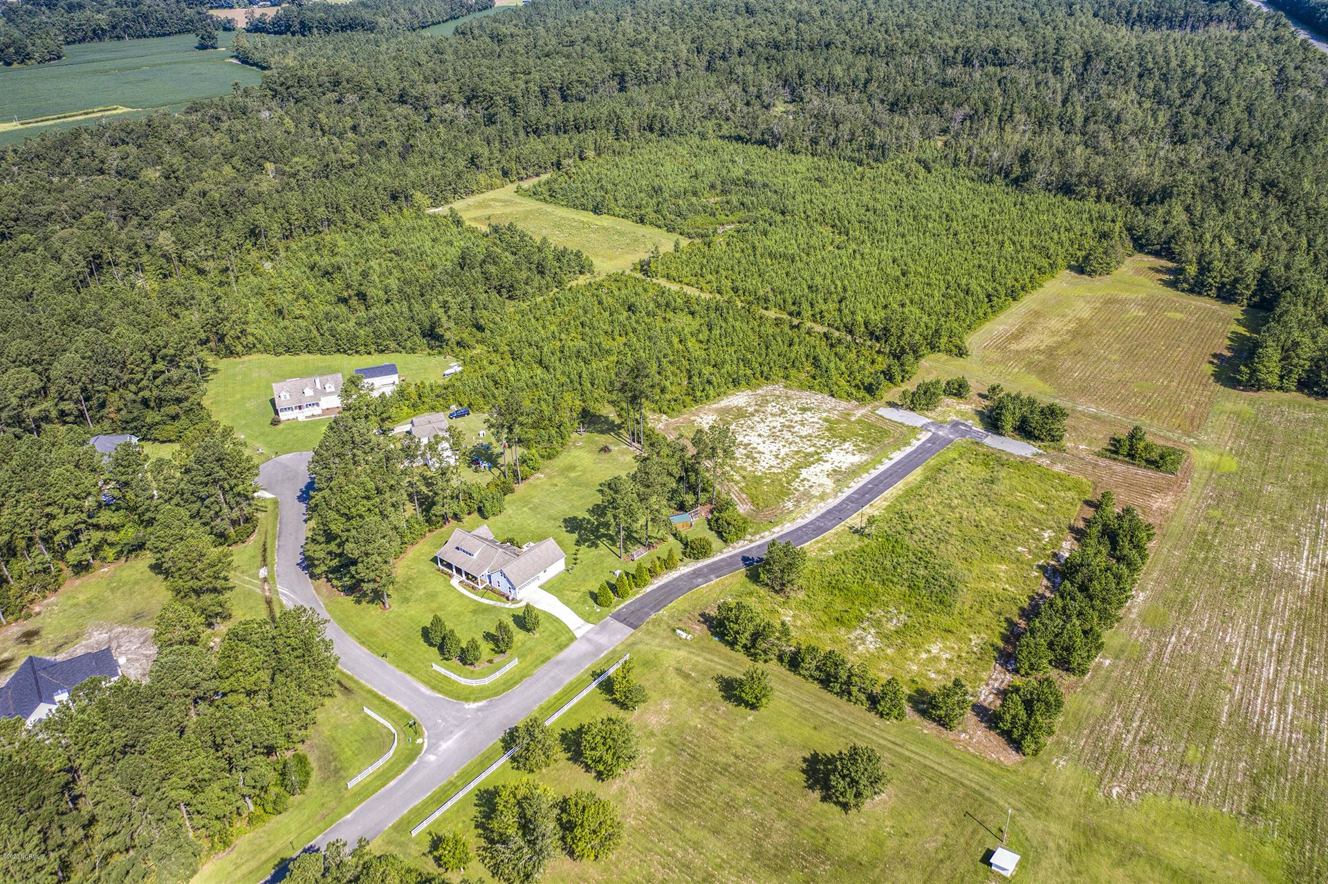 Photo of 226 Vineyard Trace, Currie, NC 28435 (MLS # 100237011)