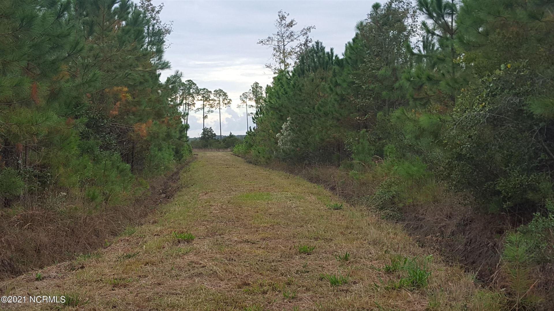 Photo of 3001 Upper Neck Road, Bayboro, NC 28515 (MLS # 100276012)