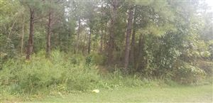 Photo of 182 Rock Road, Maple Hill, NC 28454 (MLS # 100185014)