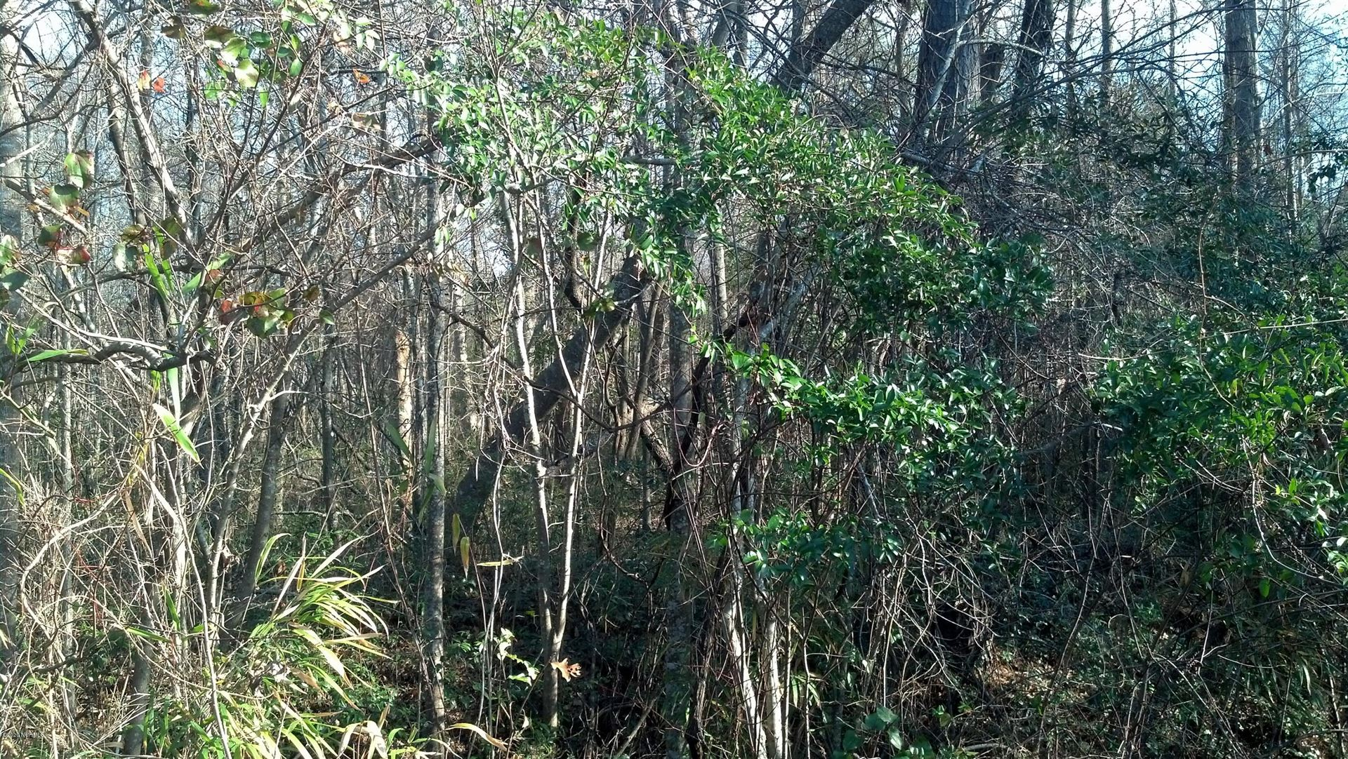 Photo for 1.26 Acres On E/Side Of 1562 Road, Hampstead, NC 28443 (MLS # 100244024)