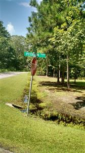 Photo of 604 Peterson Place, Oriental, NC 28571 (MLS # 100025025)