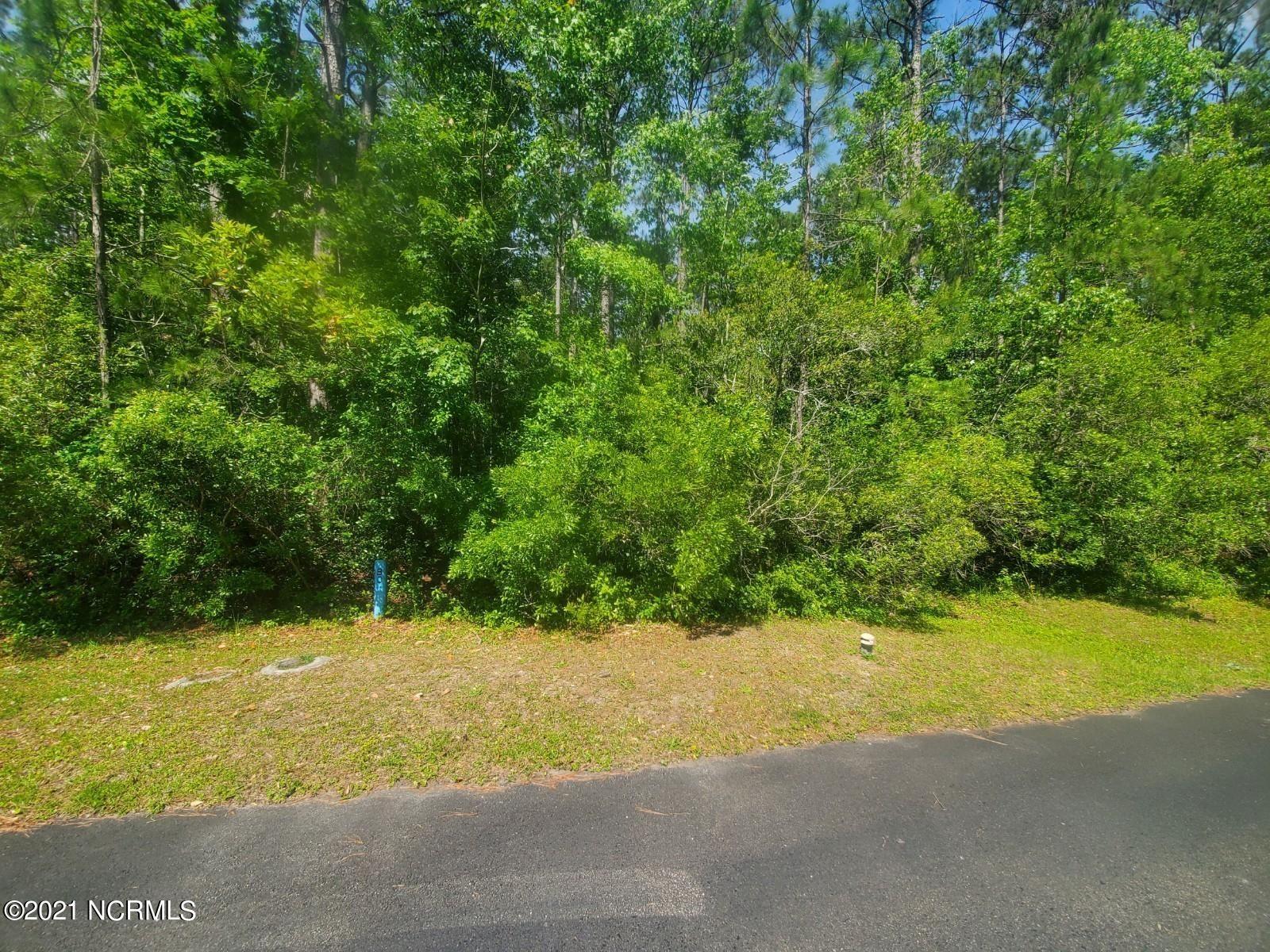 Photo of 0 Patton Lane, Hampstead, NC 28443 (MLS # 100272025)