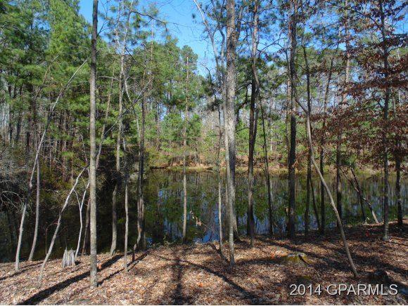 Photo of 0 Mill Run Road, Greenville, NC 27834 (MLS # 100213028)