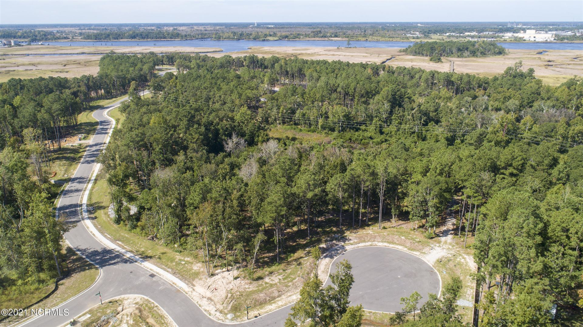 Photo of 121 Holly Berry Court, Wilmington, NC 28401 (MLS # 100292028)