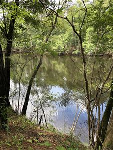 Photo of Lot 6 Beaver Trail, Burgaw, NC 28425 (MLS # 100177033)