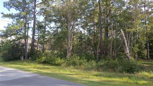 Photo of 3179 Pine Hill Drive SW, Shallotte, NC 28470 (MLS # 100186033)