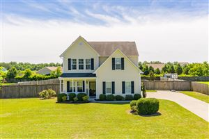 Photo of 819 Haw Branch Road, Beulaville, NC 28518 (MLS # 100171035)