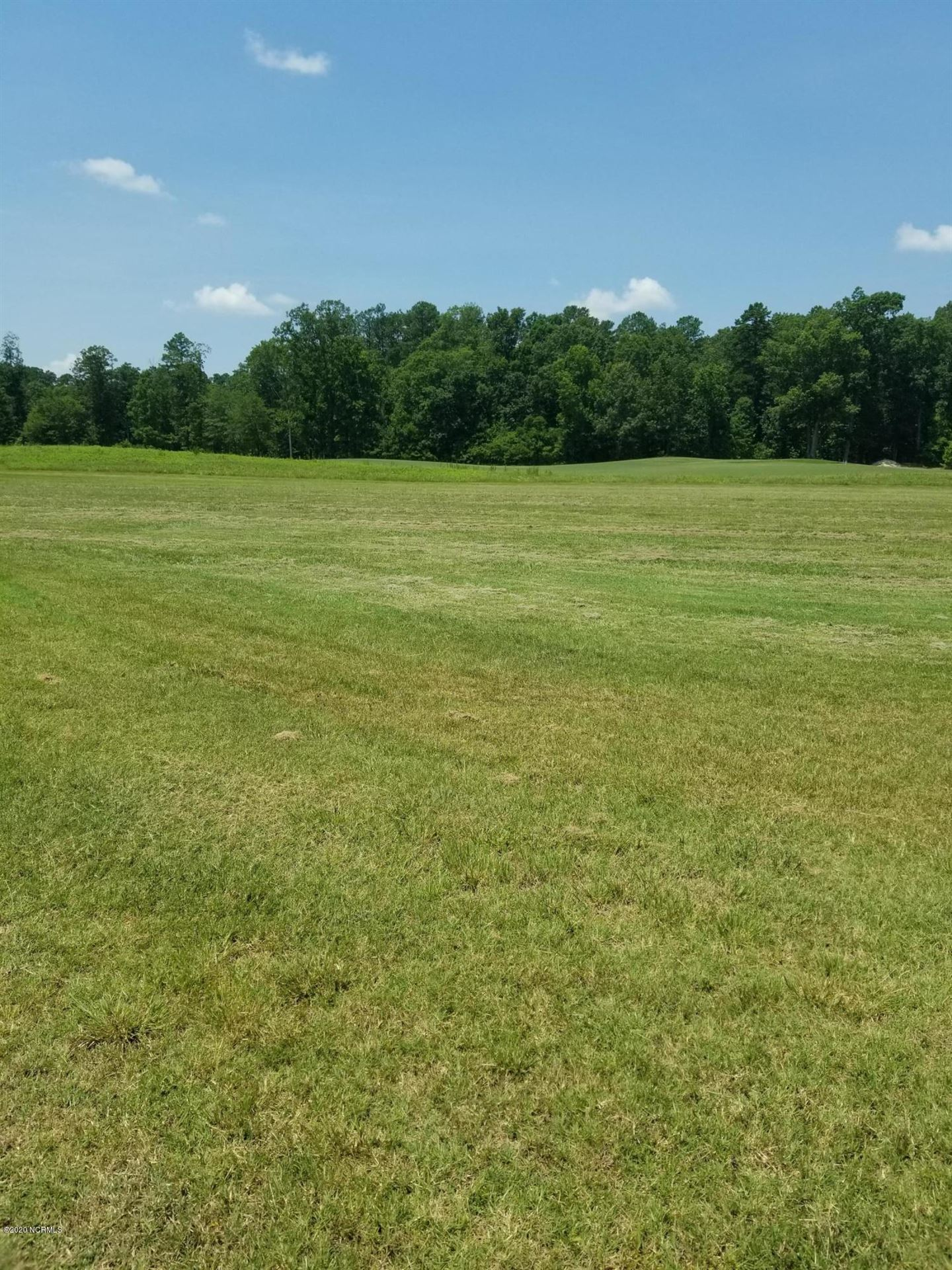 Photo of 294 Tayriver, Rocky Mount, NC 27804 (MLS # 100227039)