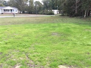 Photo of 2855 Enfield Street SW, Supply, NC 28462 (MLS # 100193042)