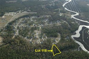 Photo of 121 Mariners Circle, Sneads Ferry, NC 28460 (MLS # 40095049)
