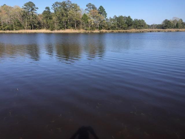 Photo of Lot 9 N Creek Drive, Belhaven, NC 27810 (MLS # 100265050)