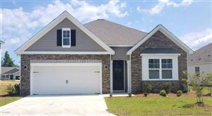 Photo of 841 Barbon Beck Lane SE #Lot 3330, Leland, NC 28451 (MLS # 100171052)