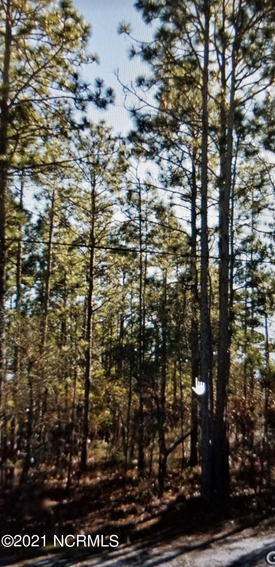 Photo of Lot 4 Fifty Lakes Drive, Southport, NC 28461 (MLS # 100295055)