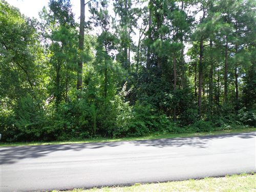 Photo of 46 Canvasback Point, Hampstead, NC 28443 (MLS # 100229056)