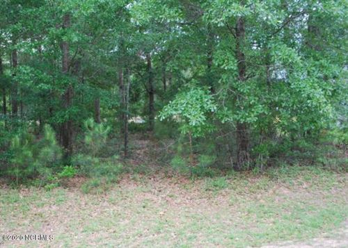 Photo of 3393 Four Water View SW, Supply, NC 28462 (MLS # 100201072)