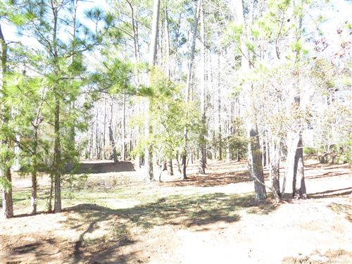 Photo of 4395 Polly Gully Court SE, Southport, NC 28461 (MLS # 100237079)