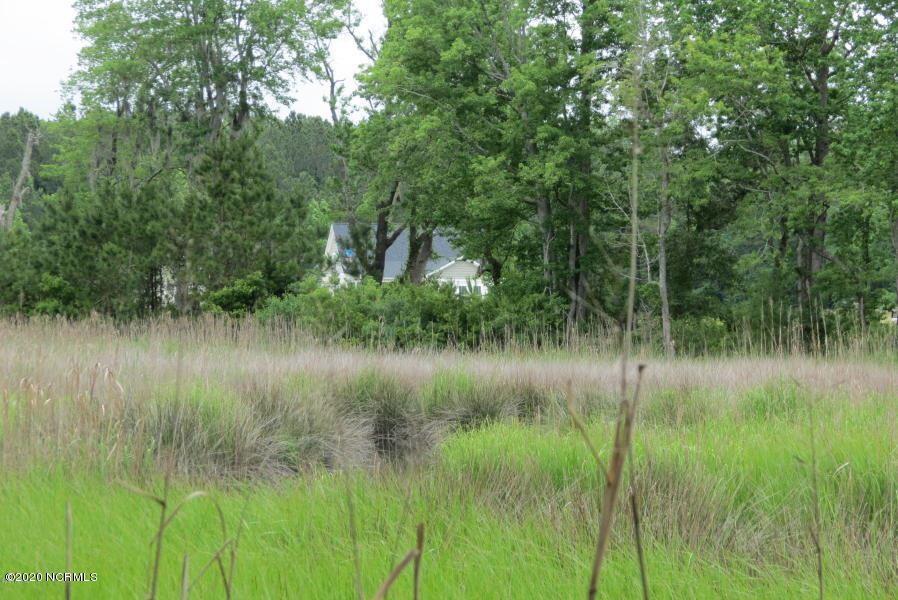 Photo of 272 Southern Plantation Drive S, Oriental, NC 28571 (MLS # 100186081)