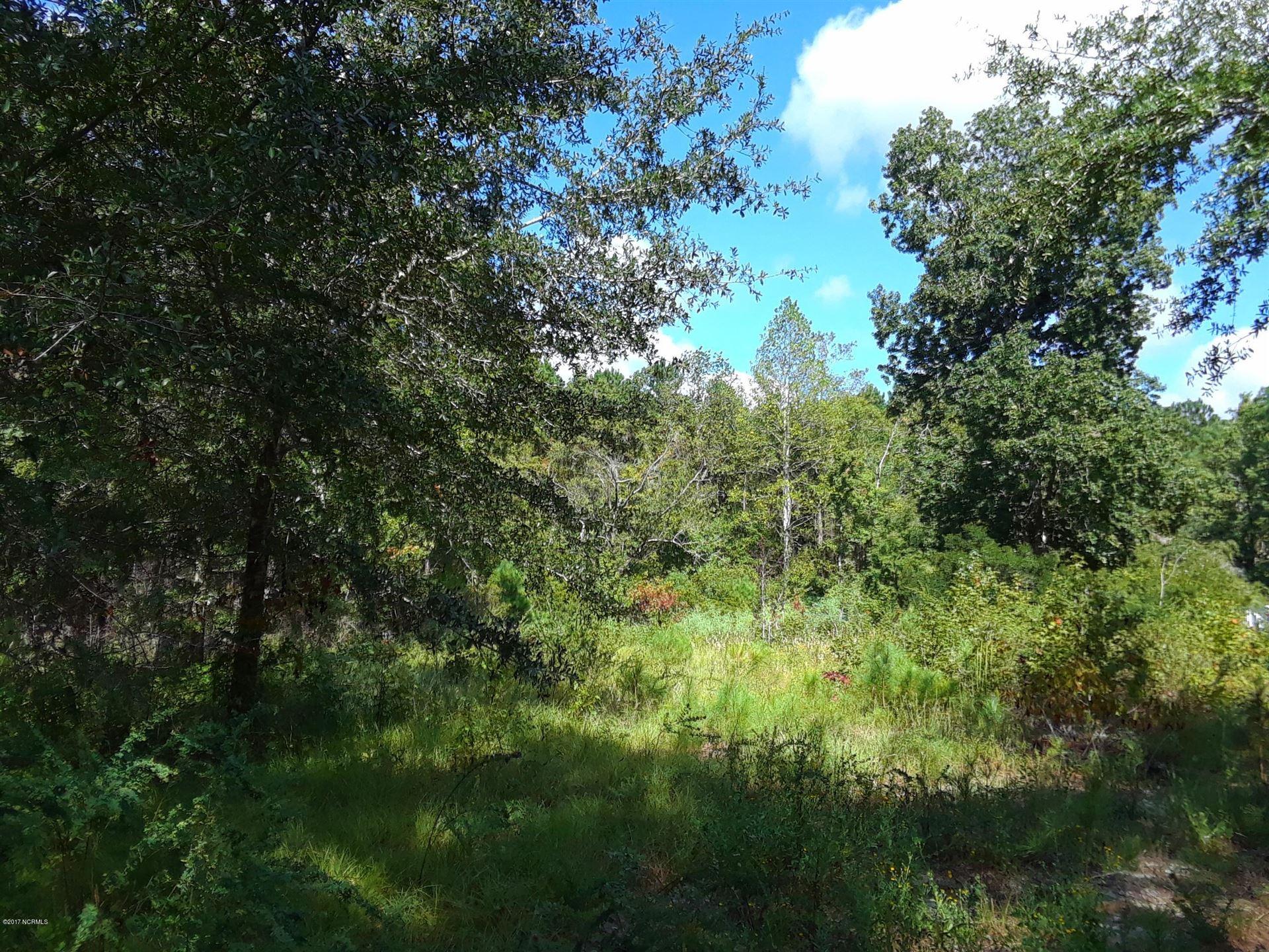 Photo of 3720 Marsh Hen Drive SW, Shallotte, NC 28470 (MLS # 100084082)
