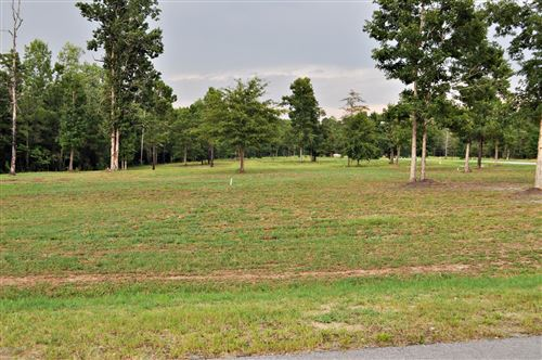 Photo of Lot 25 Richmond Drive, Rocky Point, NC 28457 (MLS # 100061093)