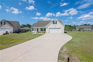 Photo of 411 Dylan Court, Beulaville, NC 28518 (MLS # 100178096)