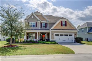 Photo of 413 Meadowland Circle, Maple Hill, NC 28454 (MLS # 100186106)