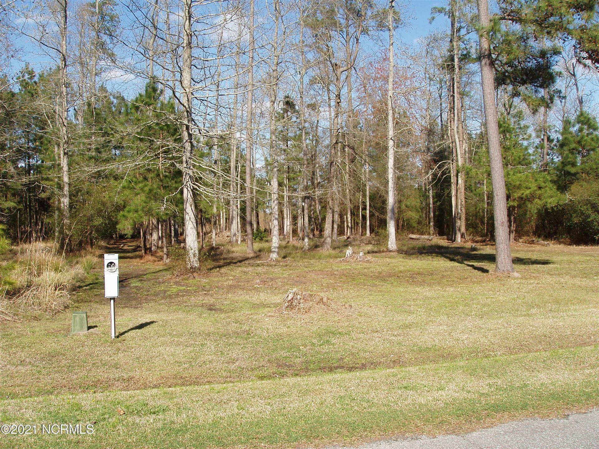 Photo of 58 W Dowry Creek West Creek, Belhaven, NC 27810 (MLS # 100274106)