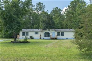 Photo of 206 Bellhammon Forest Drive, Rocky Point, NC 28457 (MLS # 100179115)