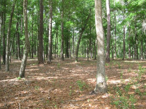 Photo of 1983 Oyster Harbour Parkway SW, Supply, NC 28462 (MLS # 100218115)