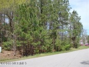 Photo of Lot 43 River Landing Drive, Rocky Point, NC 28457 (MLS # 100159118)
