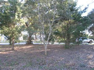 Photo of 218 Shell Drive, Sneads Ferry, NC 28460 (MLS # 100147119)