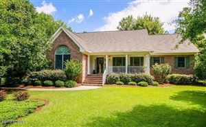 Photo of 387 Red Fox Run Drive, Wallace, NC 28466 (MLS # 100177122)
