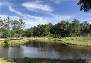 Photo of 3857 White Birch Way, Southport, NC 28461 (MLS # 100156125)