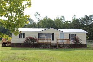 Photo of 1117 Haw Branch Road, Beulaville, NC 28518 (MLS # 100180149)