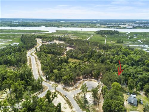 Photo of 120 Holly Berry Court, Wilmington, NC 28401 (MLS # 100273149)