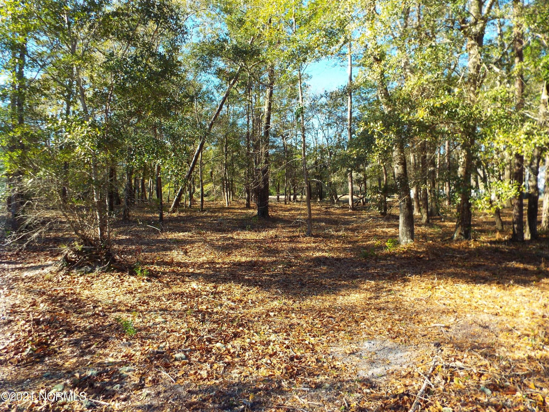 Photo of 3431 Eagle Crest Drive SW, Supply, NC 28462 (MLS # 100282155)