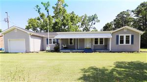 Photo of 128 Thomas Road, Beaufort, NC 28516 (MLS # 100172157)