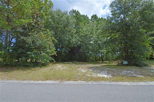 Photo of 214 Ashworth Manor Court, Wilmington, NC 28412 (MLS # 100189160)