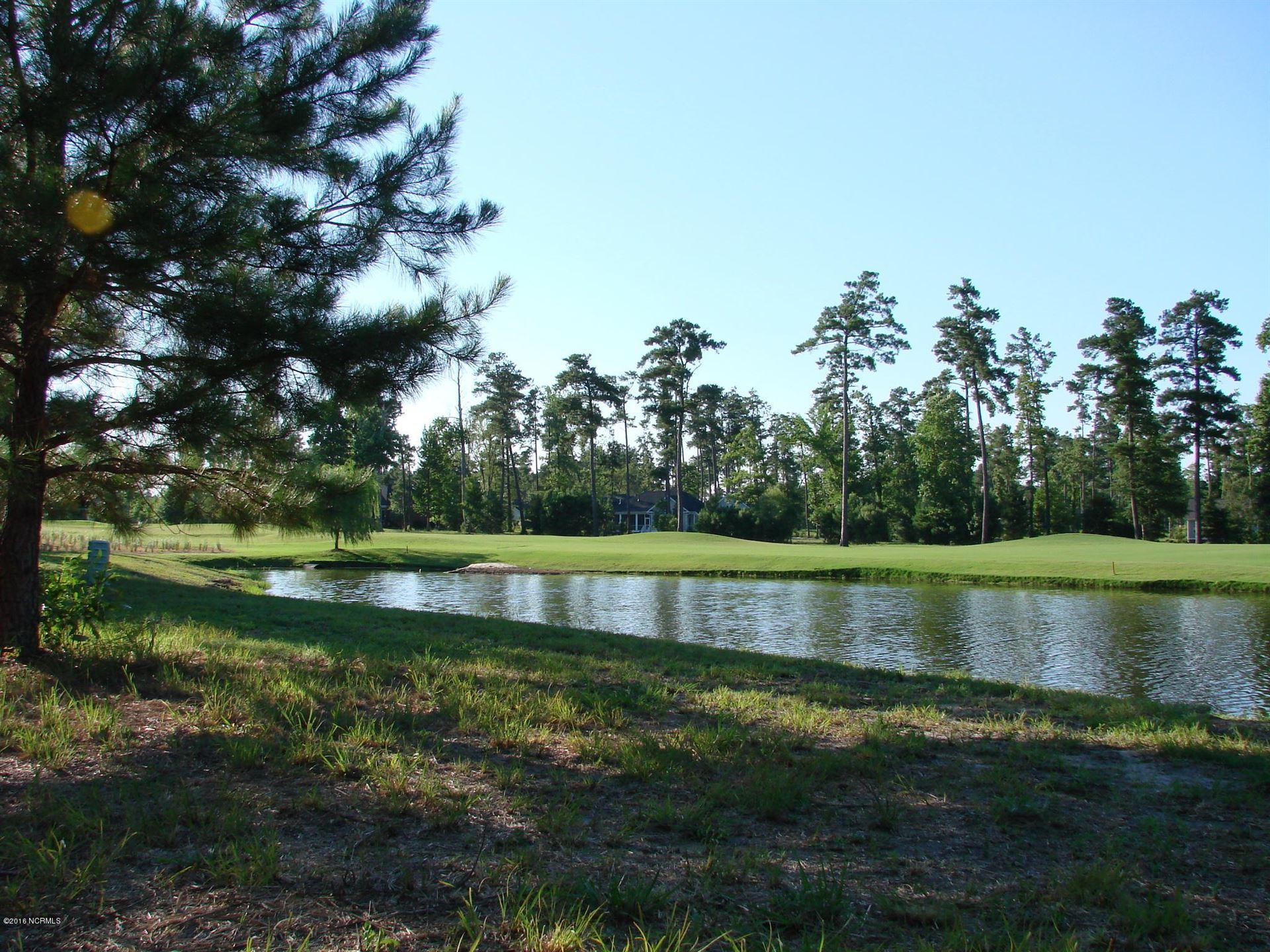 Photo of 259 Red Fox Run Drive, Wallace, NC 28466 (MLS # 100290160)