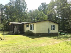 Photo of 1196 Arvida Spur Road, Rocky Point, NC 28457 (MLS # 100185180)