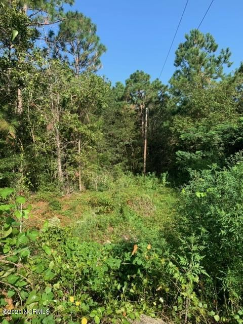 Photo for 340 Westchester Road, Wilmington, NC 28409 (MLS # 100236200)