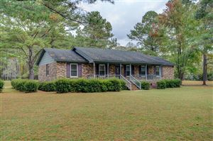 Photo of 351 Arvida Spur Road, Rocky Point, NC 28457 (MLS # 100192203)